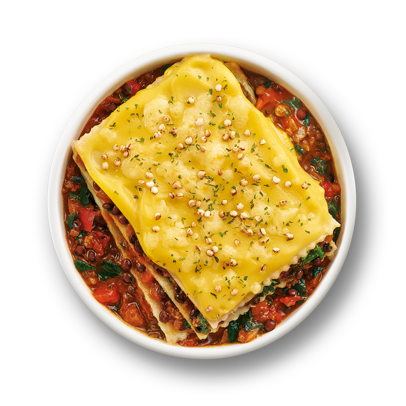 SN-Pulses-Lasagna